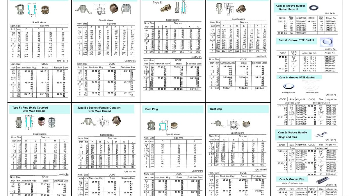acoplamiento de aire comprimido europeo manguera conector de embrague y manguera de aire manguera de aire Tiopeia 10 piezas de acoplamiento r/ápido 1//4 BSP para mangueras